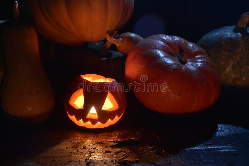 Udziały banie w ciemnej lasowej Halloween dyniowej dźwigarce stawiają czoło fotografia royalty free