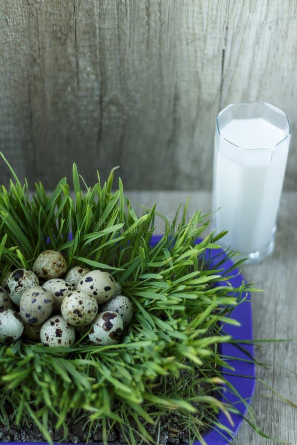 udziały przepiórek jajka na zielonej trawie i szkle mleko fotografia stock