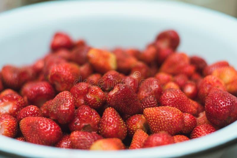 Udziały truskawki w pucharze odgórnego widoku A duże ilości truskawki zbierał na gospodarstwie rolnym zdjęcie royalty free