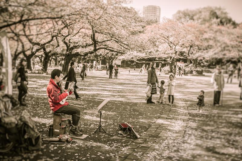 The UENO park at a busy weekend afternoon royalty free stock photography