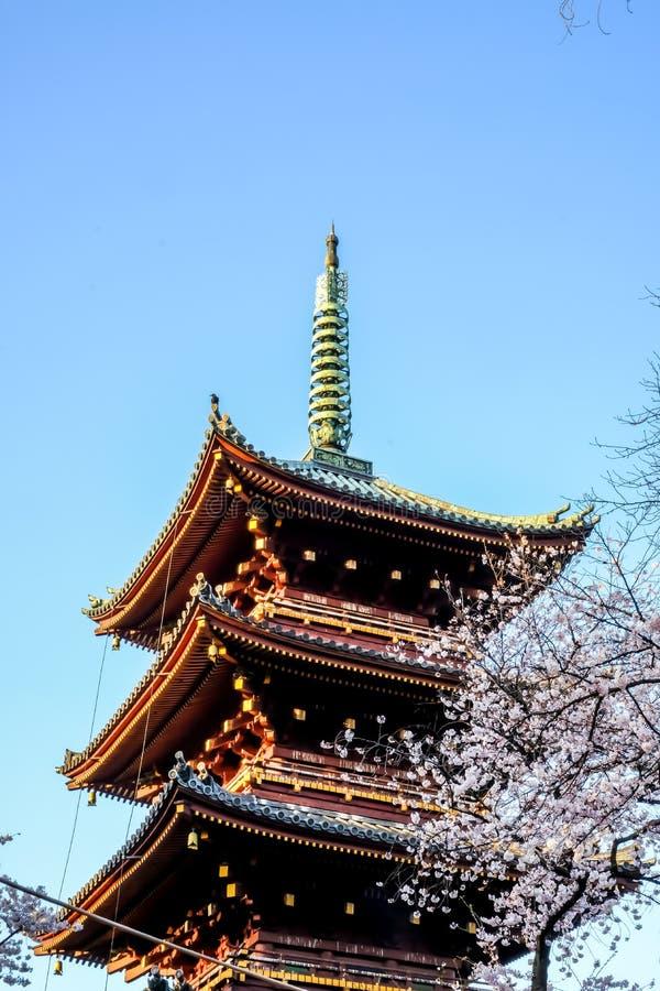Ueno Sakura Matsuri Cherry Blossom Festival in Ueno ParkUeno Koen, Taito, Tokyo, Japan op 7,2017 April: Vijf-verhaal pagode van f royalty-vrije stock fotografie