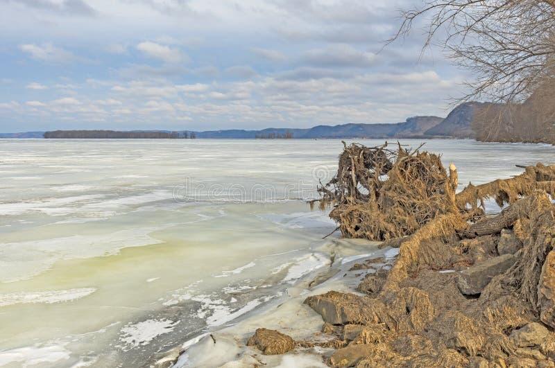 Ufer-Ansicht entlang den gefrorenen Fluss Mississipi im Winter lizenzfreie stockfotografie