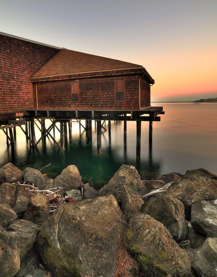 Ufergegendleben stockfotografie