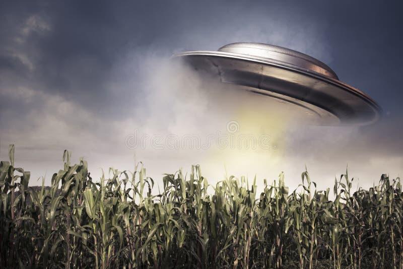UFO, das über einem Getreidefeld schwebt lizenzfreies stockbild