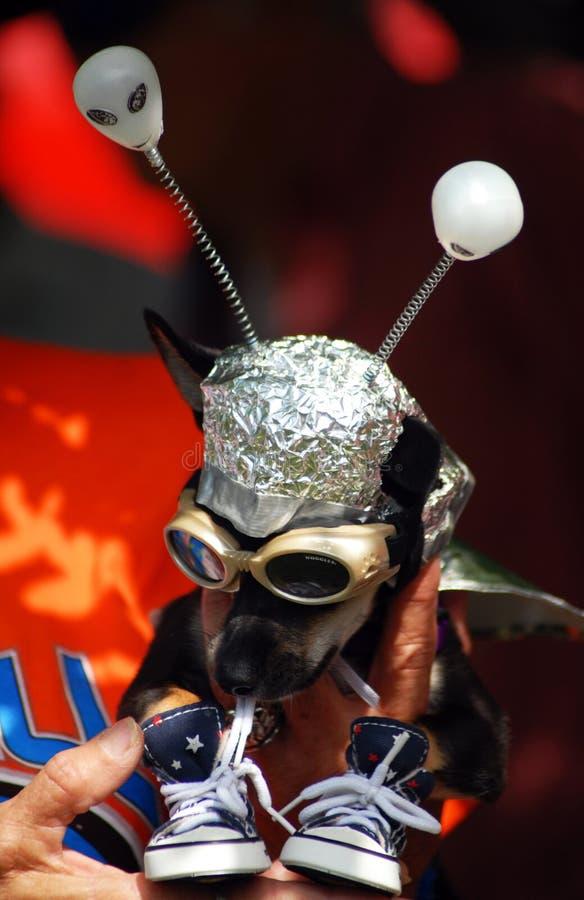 UFO-Festival lizenzfreies stockbild