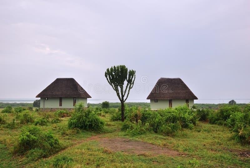 Uganda, Lake George coast, Africa stock photos