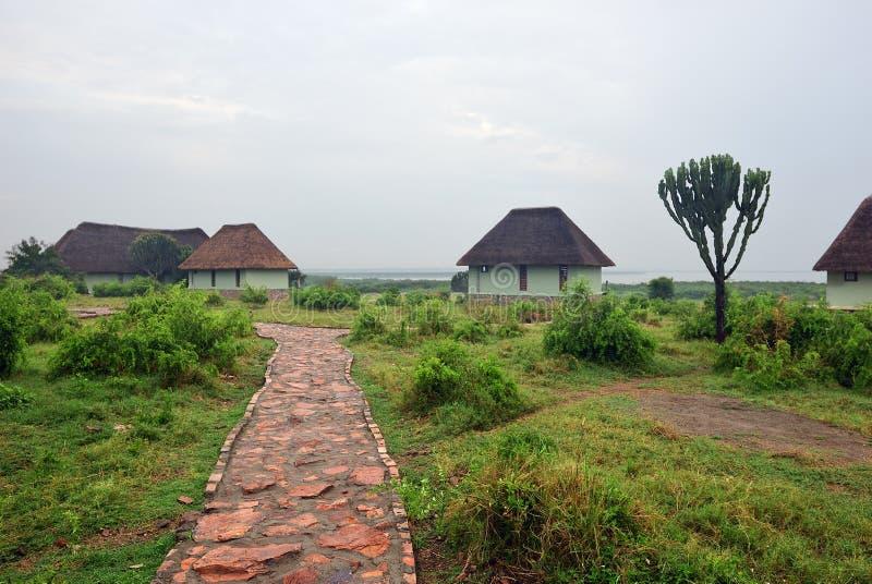 Uganda, Lake George coast, Africa royalty free stock images