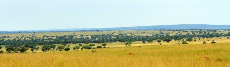 Uganda Savannah Panorama foto de stock