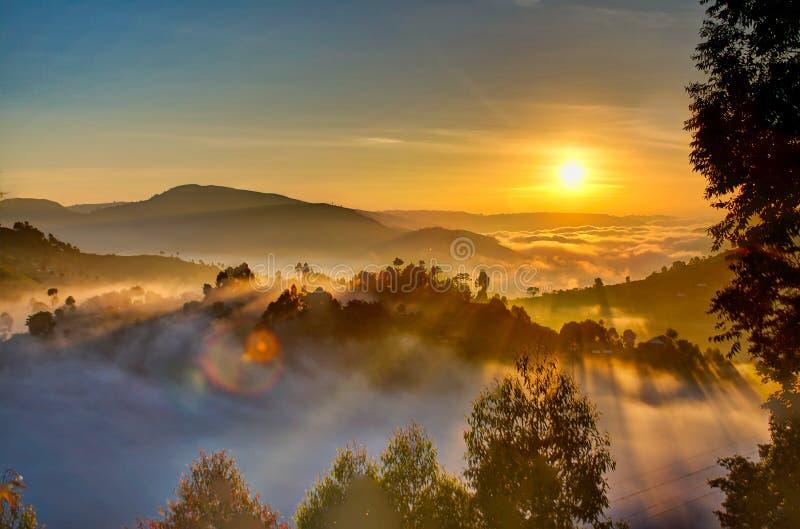 Uganda sunrise with trees, hills, shadows and morning fog stock images