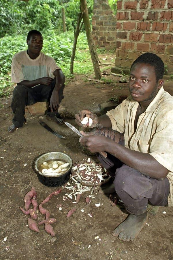 Ugandan man is peeling cassava while cooking. Uganda, Luweero district, village Kalasa: a bachelor, young man, red peeling cassava, manioc, sweet potatoes while royalty free stock photos