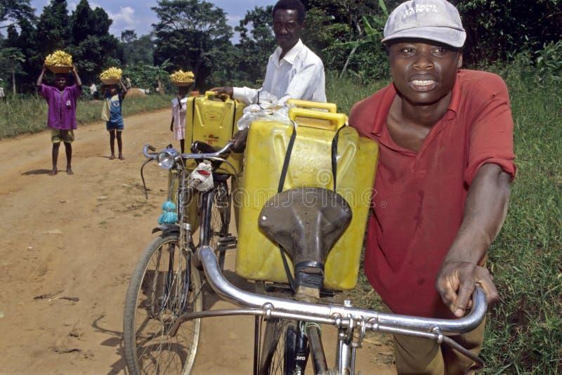 Ugandans lugging with drinking water and bananas. Uganda, Luwero district, village Bombo: Portrait of a Ugandan man, young man, jug with drinking water on stock photo