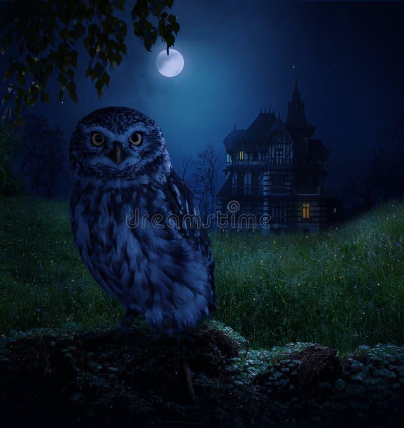 Uggla och månsken royaltyfri illustrationer