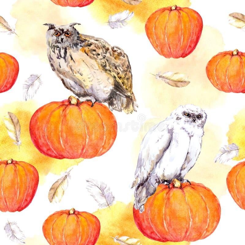Download Uggla På Pumpa Sömlös Modell För Allhelgonaaftonvattenfärg Arkivfoto - Bild av färg, halloween: 78728212