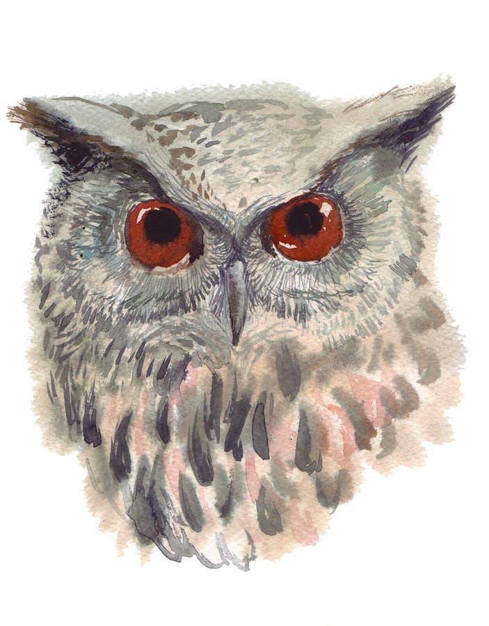 Ugglan fågeln, vattenfärg, skissar, målar, djur, illustration arkivfoton
