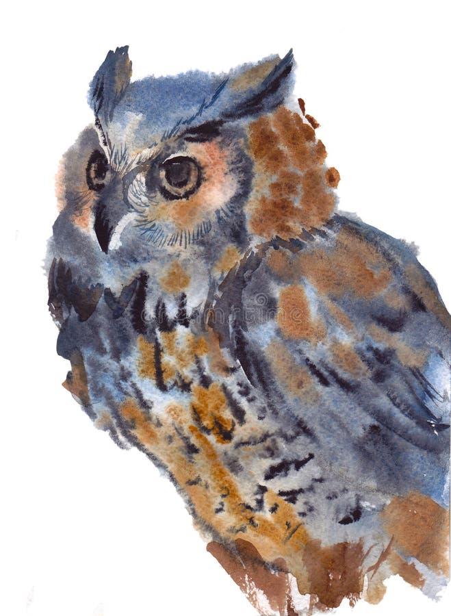 Ugglan fågeln, vattenfärg, skissar, målar, djur, illustration royaltyfri bild