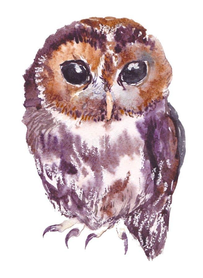 Ugglan fågeln, vattenfärg, skissar, målar, djur, illustration royaltyfri illustrationer