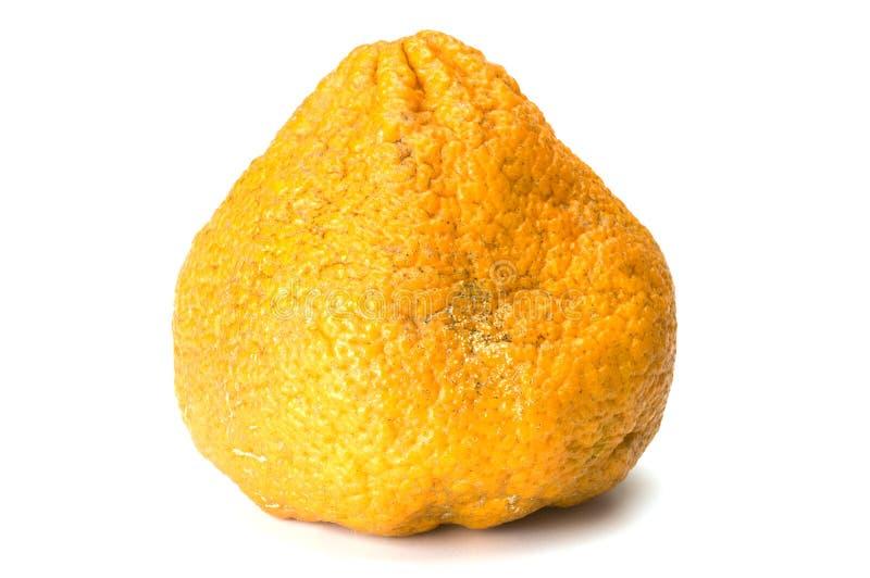 ugli плодоовощ стоковое изображение rf