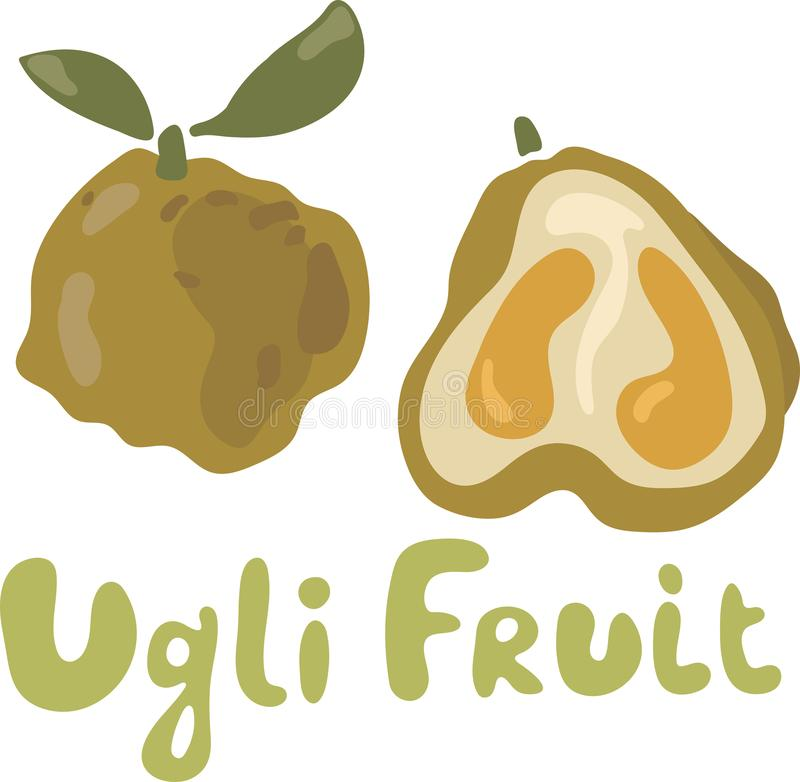 Ugly Fruit Vector Png Image With Adobe I #2185003 - PNG Images - PNGio