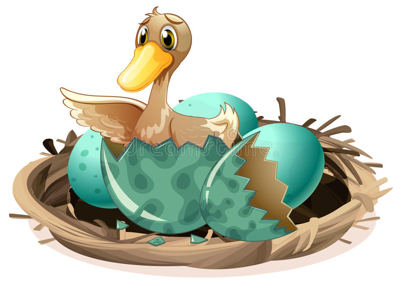 Ugly duckling hatching egg in nest. Illustration royalty free illustration