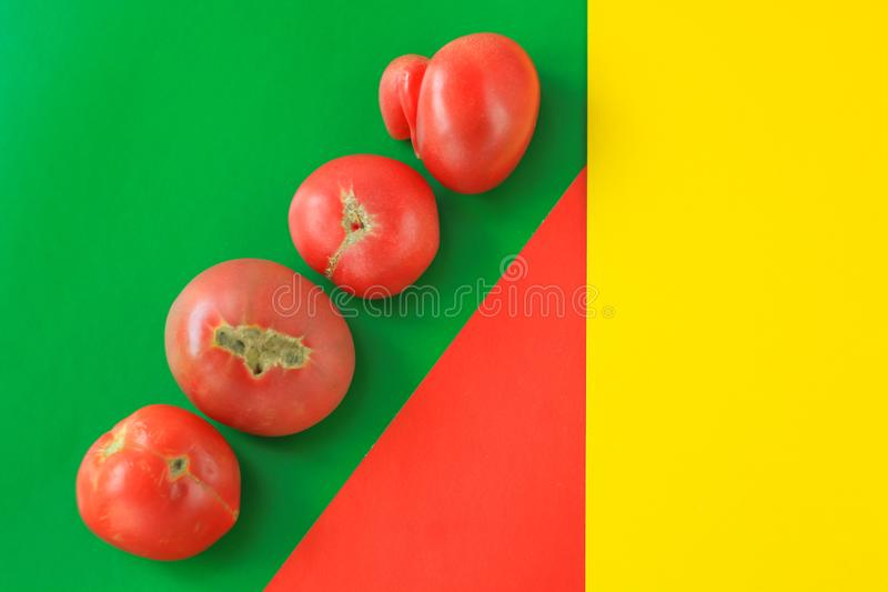 Ugly food concept, deformed tomatoes on the red, green and yellow background, copy space, creative geometric image stock photos