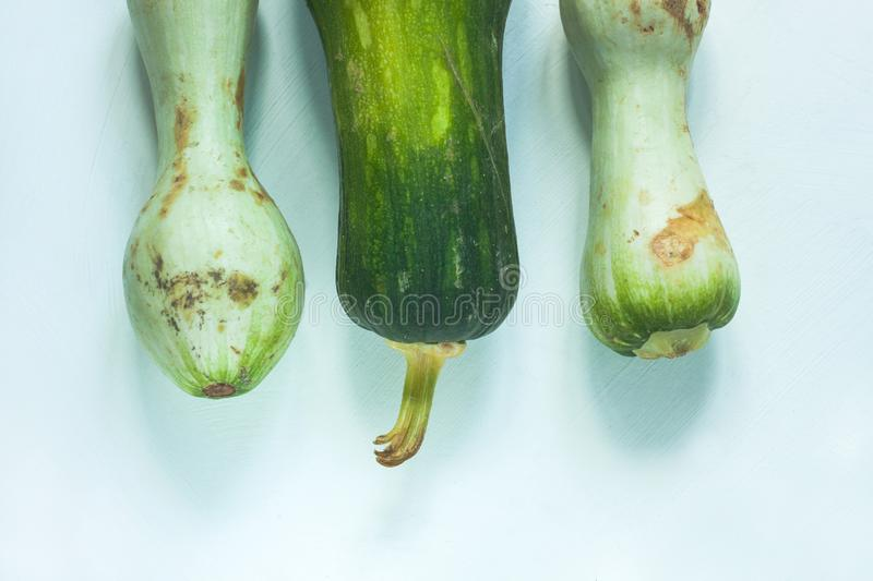 Ugly food concept. Unusual shaped zucchini with mold, scar-like structure, scratches. Top view. Ugly food concept. Unusual shaped zucchini with mold, scar-like royalty free stock photo