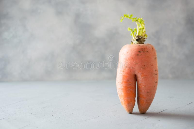 Ugly one organic carrot. Space for text. Concept organic vegetables. Ugly one organic carrot . Space for text. Concept organic natural vegetables royalty free stock images