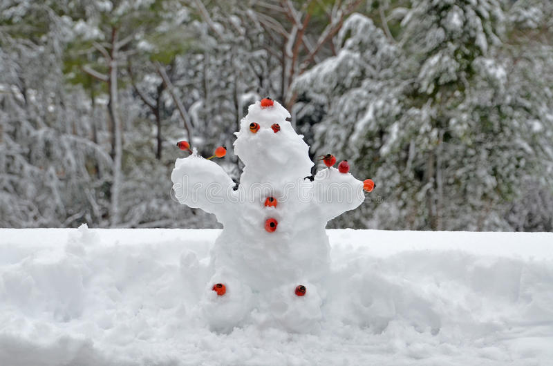 Ugly Snow Puppet Royalty Free Stock Images