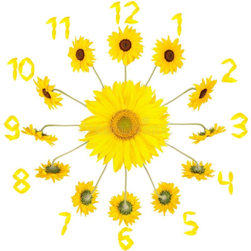 Uhr mit Sonnenblumen stockbilder