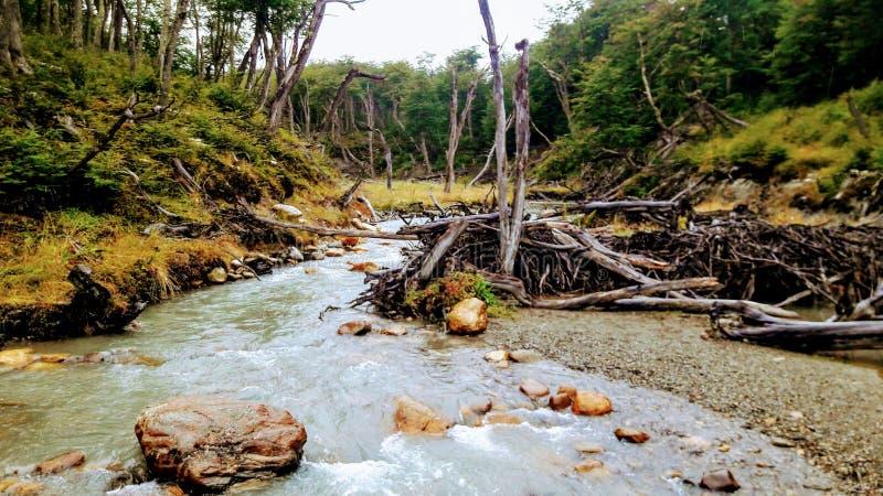 Uhsuaia, Tierra del Fuego, Argentine photos stock