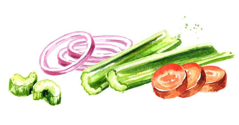 Uien, selderie en wortelen Soffritto of Mirepoix Waterverfhand getrokken die illustratie op witte achtergrond wordt geïsoleerd stock illustratie