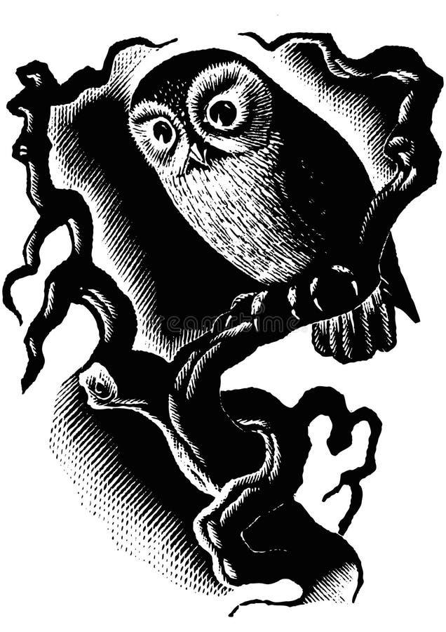 Uil in dark stock illustratie