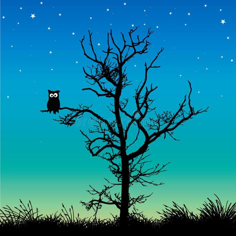 Uil in een boom vector illustratie