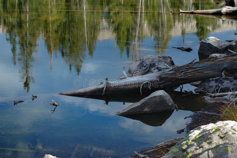 Uinta Gebirgsszene - Seen lizenzfreies stockfoto