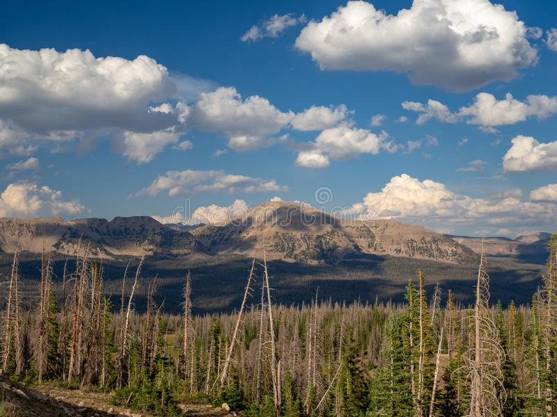 Uinta Wasatch贮藏所国家森林,Mirror湖,犹他,美国,美国,在Slat湖和帕克附近 免版税库存图片