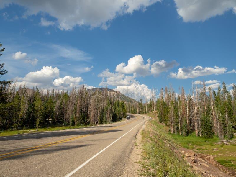 Uinta Wasatch贮藏所国家森林,Mirror湖,犹他,美国,美国,在Slat湖和帕克附近 图库摄影