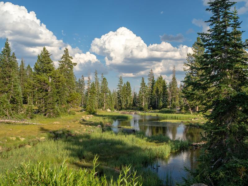 Uinta-Wasatch-Cache National Forest, Mirror Lake, Utah, United States, America, near Slat Lake and Park City.  stock photo