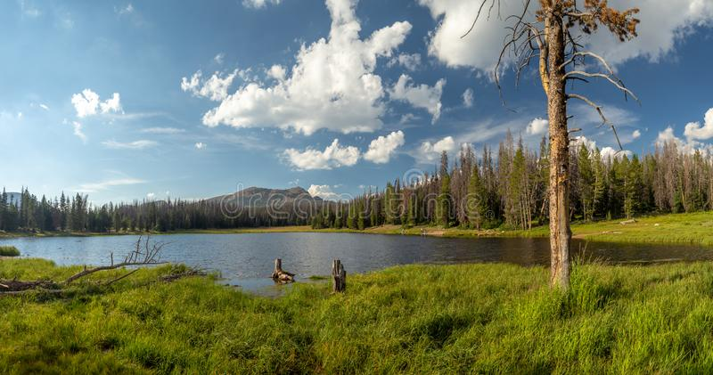 Uinta-Wasatch-gömställe nationalskog, spegel sjö, Utah, Förenta staterna, Amerika, nära Slat sjön och Park City arkivfoton