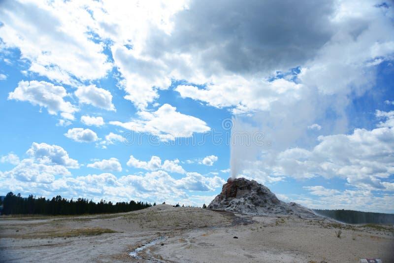 Uitbarsting van Witte Koepelgeiser in Yellowstone royalty-vrije stock foto's