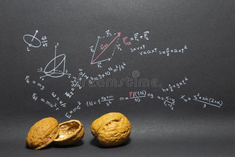 Uitdrukkings in een notedop Fysica stock afbeelding