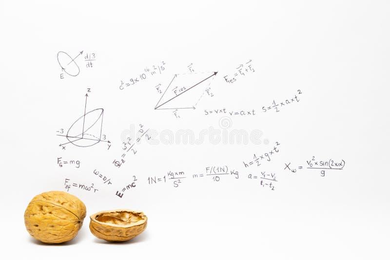 Uitdrukkings in een notedop Fysica stock foto
