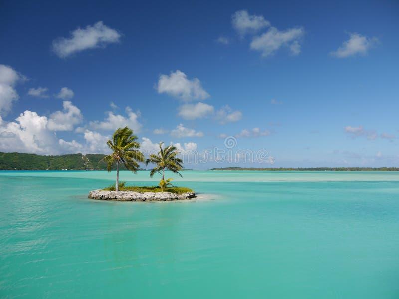 Uiterst klein palmeiland in een turkooise lagune royalty-vrije stock afbeelding