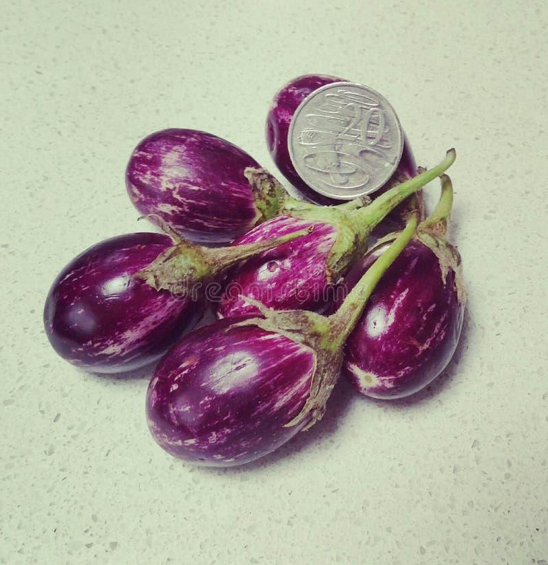 Uiterst kleine aubergines stock foto