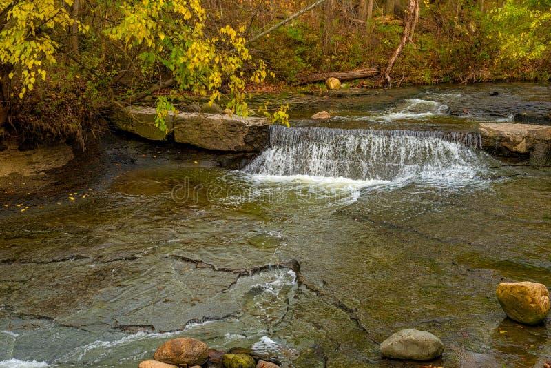 Uiterst kleine waterval onder de herfstgebladerte stock foto