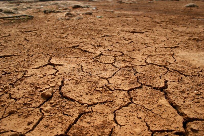 Uitgedroogd land na de hete zomer stock fotografie