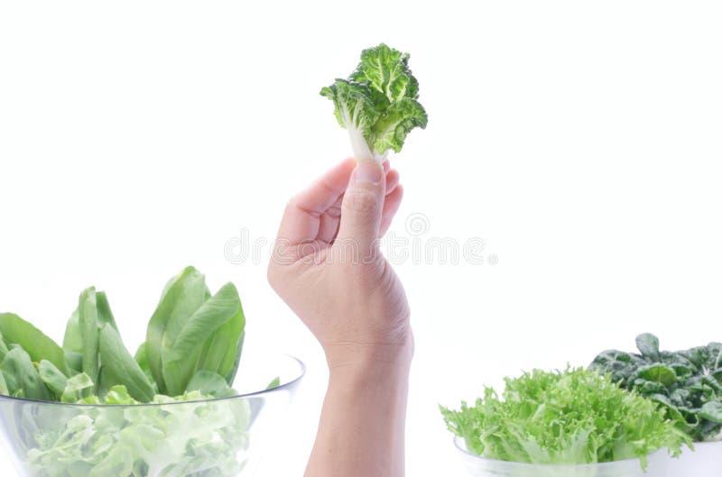 Uitgelezen groenten stock foto