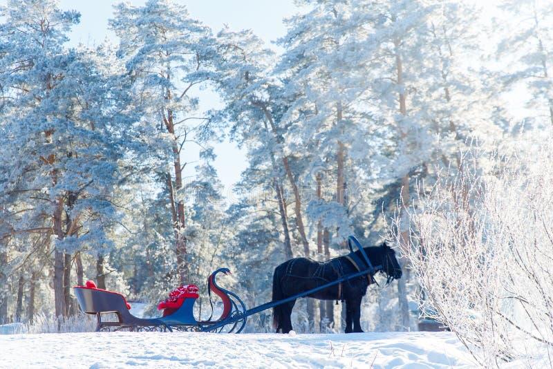 Uitgerust paard met een ar in de snow-covered boswinter royalty-vrije stock foto