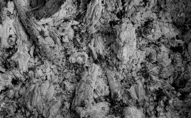 Uitgestorven sintels van vuur gedetailleerde voorraadfoto stock afbeelding