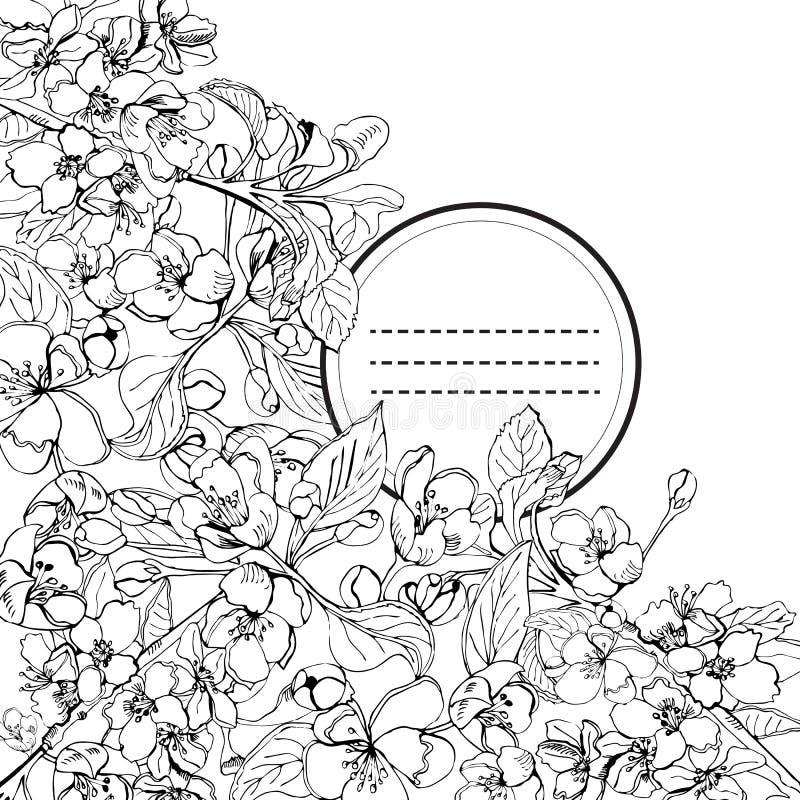 Uitnodiging van tot bloei komende tak van appelboom Hand getrokken sketchof malusbloemen op witte achtergrond royalty-vrije illustratie