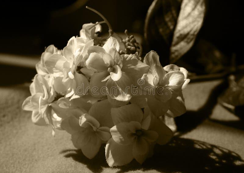 Uitstekend bloemboeket royalty-vrije stock afbeeldingen