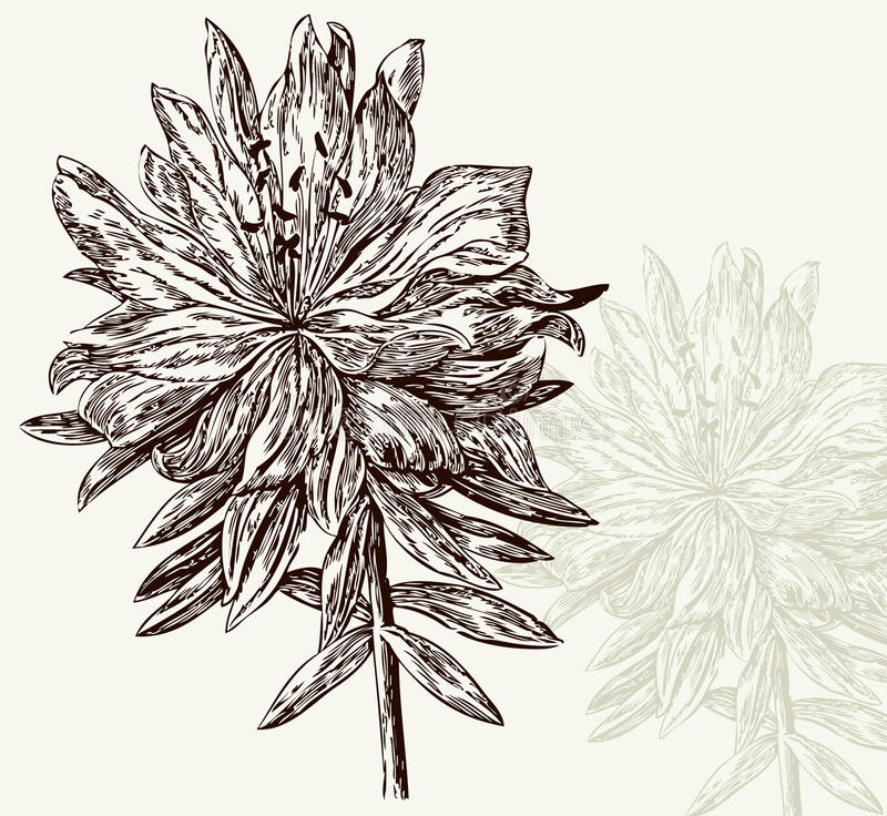 Uitstekend bloempatroon stock illustratie